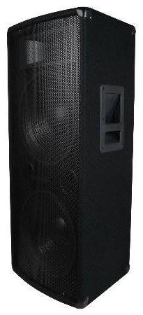Dual 15 Inch Woofers 2-Way PA / DJ Speaker